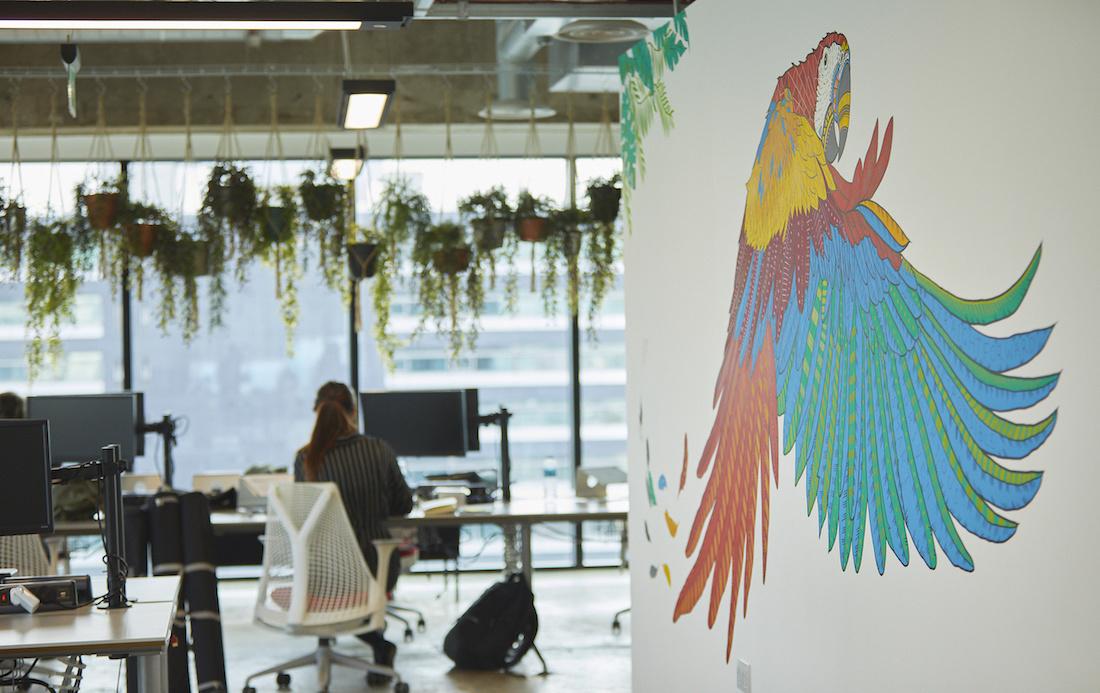 Peak office with bird